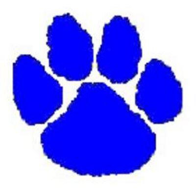 Valley View  - Cougars