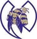 Hiram Hornets - NWGYFL - Hiram Hornets 10U D1 Football Team