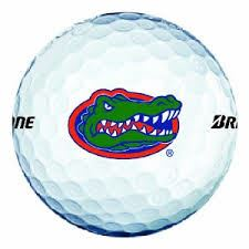 Dickinson High School - Gator Golf
