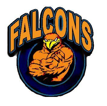 Briar Woods High School - Boy JV Soccer Team