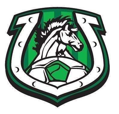 Arlington High School - Boys Varsity Soccer