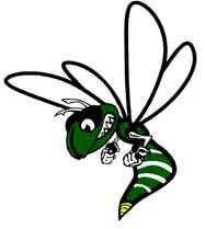 Williamston High School - Boys' Varsity Basketball