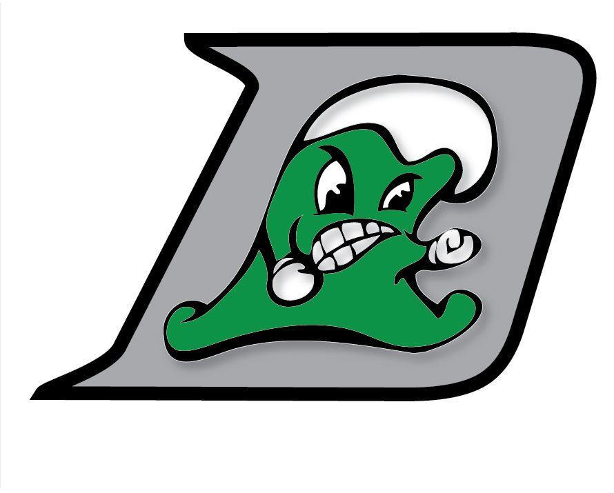 Dover High School - Boys Varsity Lacrosse