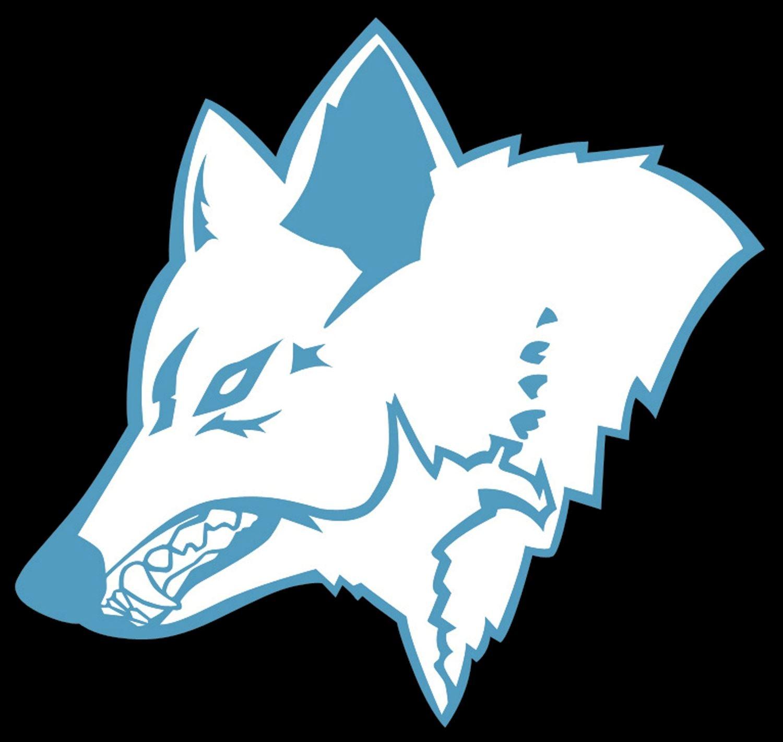 Franken Timberwolves - SeniorWolves