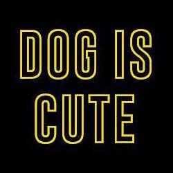 犬はかわいい - 犬はかわいい