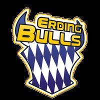 Erding Bulls - Seniors