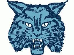 Wilmington High School - Wilmington Wildcats Varsity Volleyball