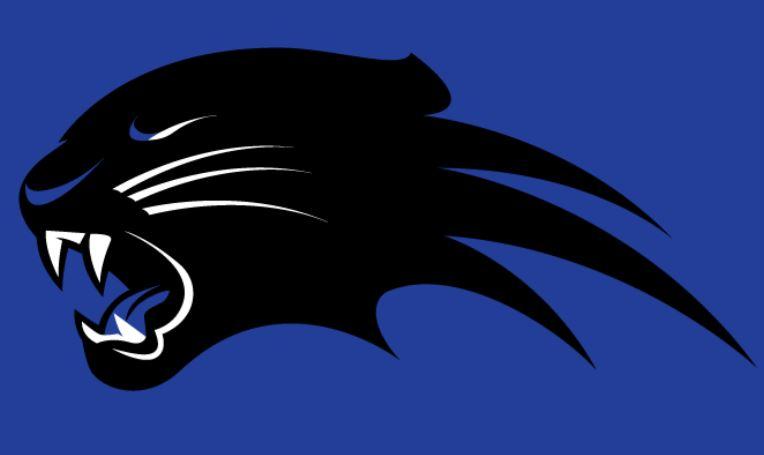 Triad - JV Panthers