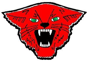 Cunningham High School - Boys Wildcat Basketball