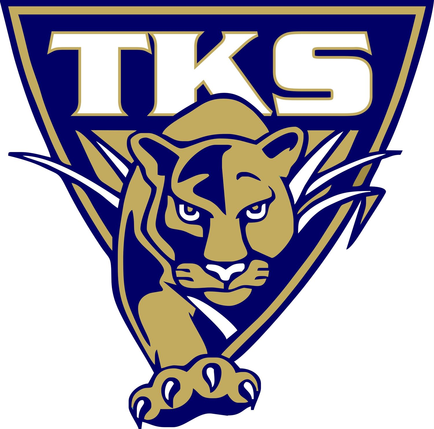 TK Stone Middle School - Boys' Varsity Football