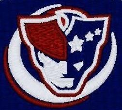 Apex Friendship High School - JV Football