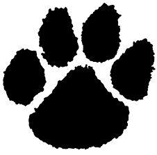 Northport Tigers - HYSL - 10 Yr. Old Tigers