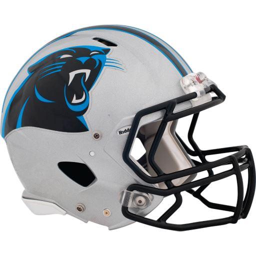 Danville - Panthers