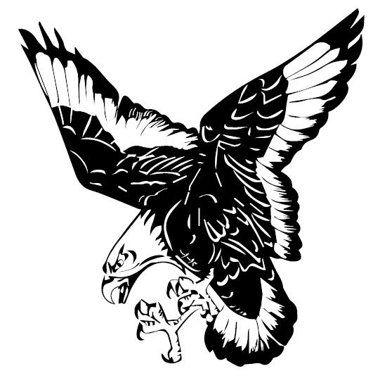 Mississinawa Valley High School - Boys Varsity Football