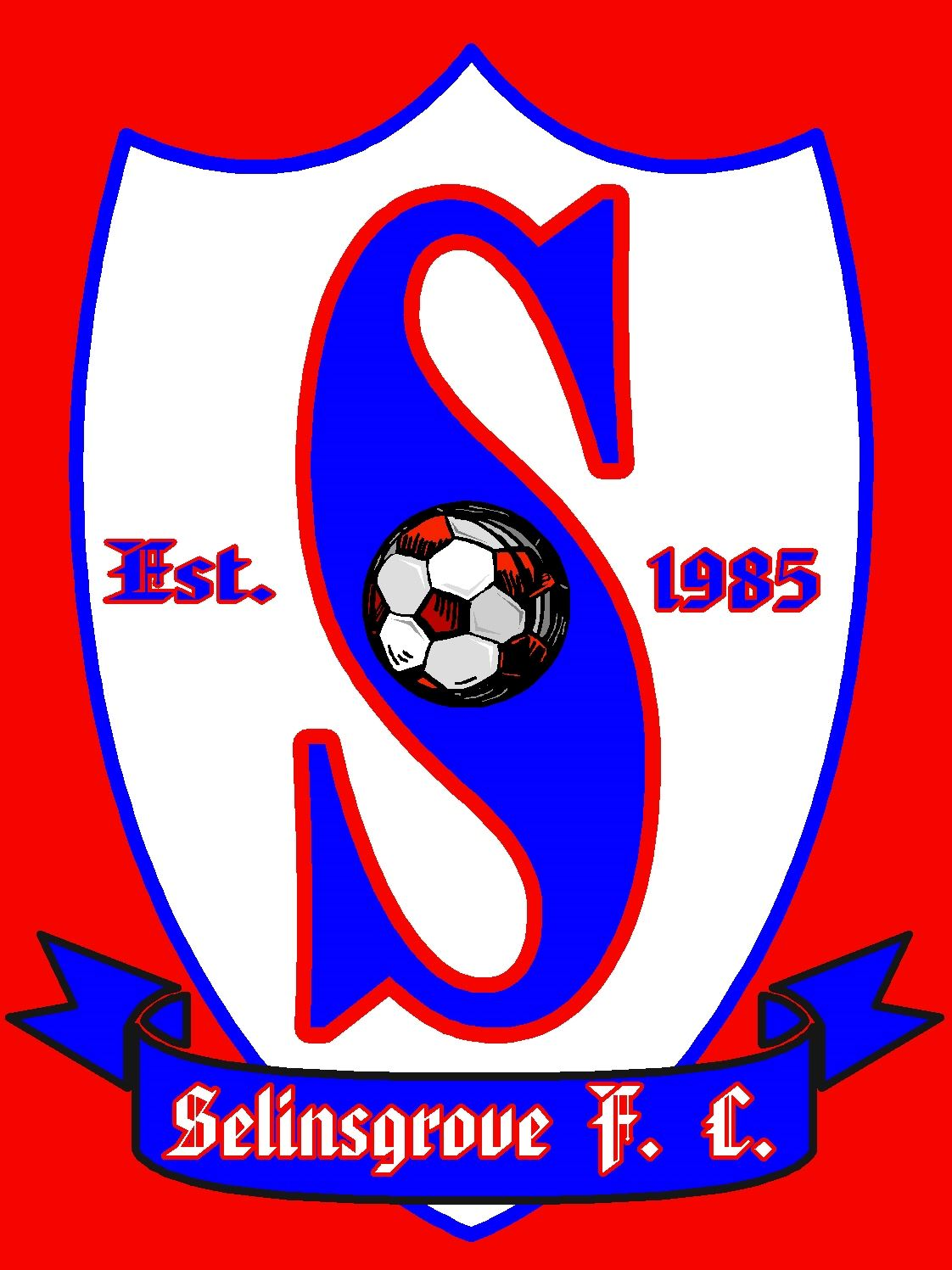 Selinsgrove Area High School - Boys' Varsity Soccer