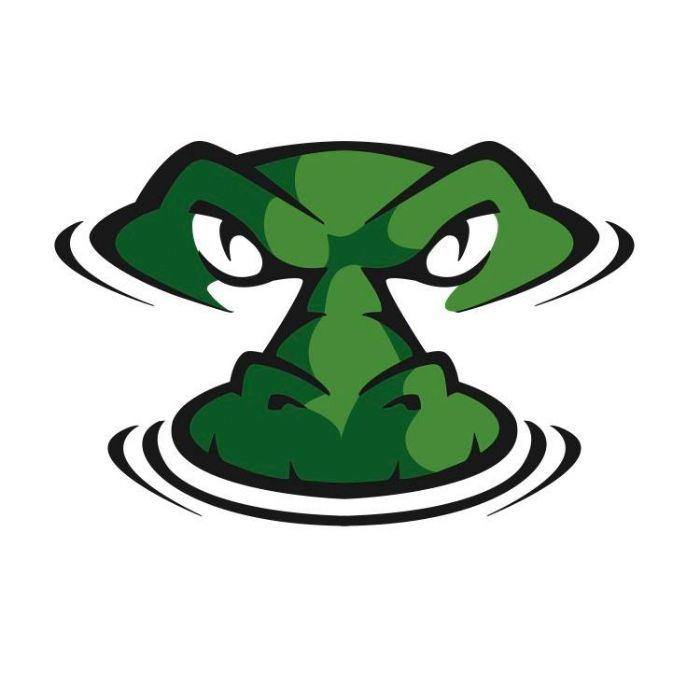 Davidsonville Gators - 13U Central