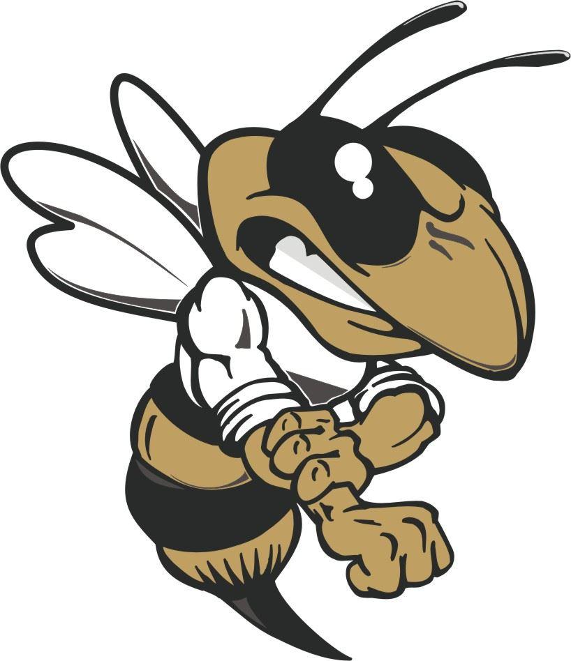 Hayesville - Boys Varsity Football