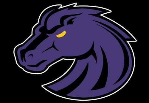 Riser Middle School - Mustang Football