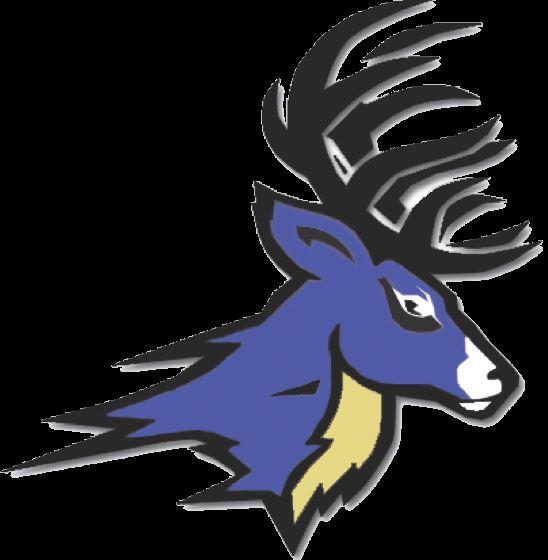Deer Park High School - Boys Varsity Football
