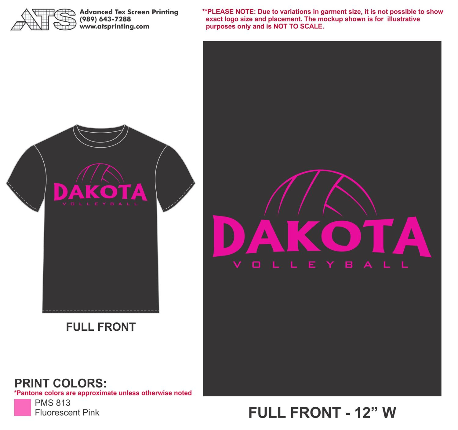 Dakota High School - Girls' Varsity Volleyball