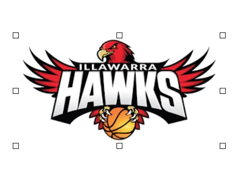 Illawarra Hawks - Illawarra Hawks