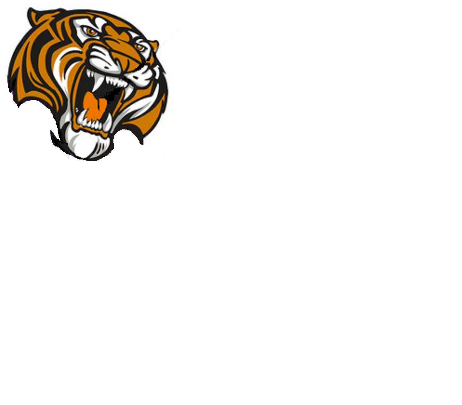Michel Roy Youth Teams - Tigres ESHG