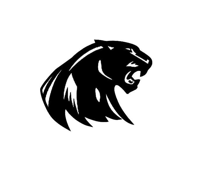 South Lyon Panthers Youth Football - South Lyon Panthers JV Black