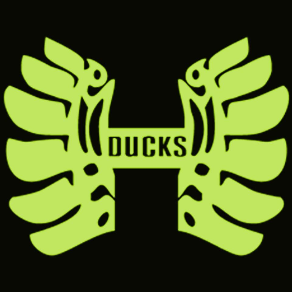 Houston Ducks - Houston Ducks