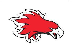 Devils Lake High School - Boys' Varsity Ice Hockey