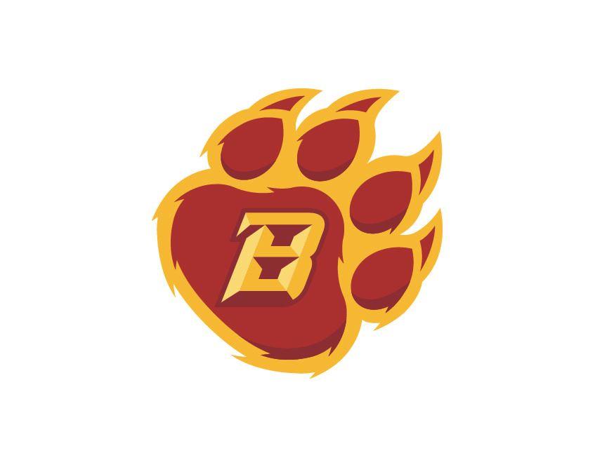 Bridgeport High School - Bridgeport JV Football Team