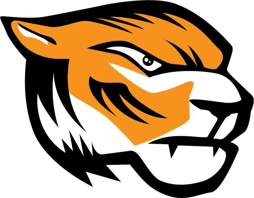 Športno Društvo Domžale Tigers  - Tigers