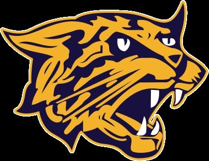 West Genesee High School - Boys' Varsity Ice Hockey