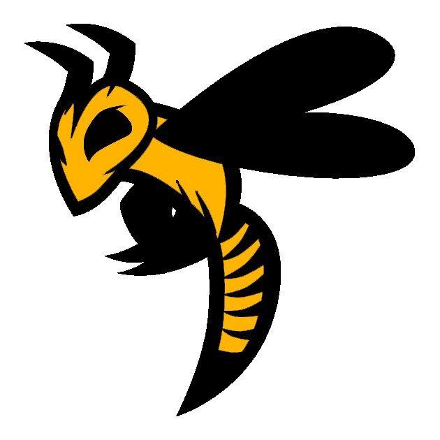 Ohio Swarm Basketball/Baseball - Ohio Swarm