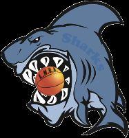 LMBA - Lady Sharks
