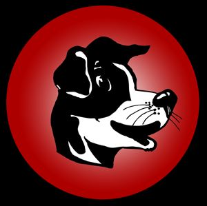 Brockway High School - Boys' JV Basketball