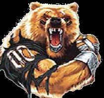 Grassfield High School - GrizzlyFootball