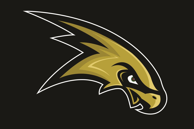 Corning-Painted Post High School - JV Football Team