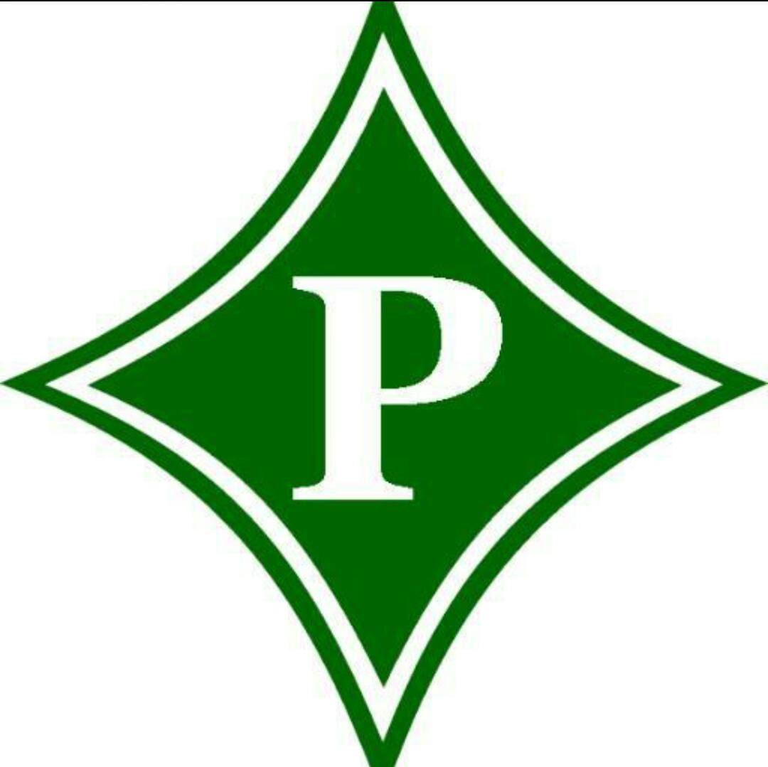 Pickens County-  - Dragons 11u