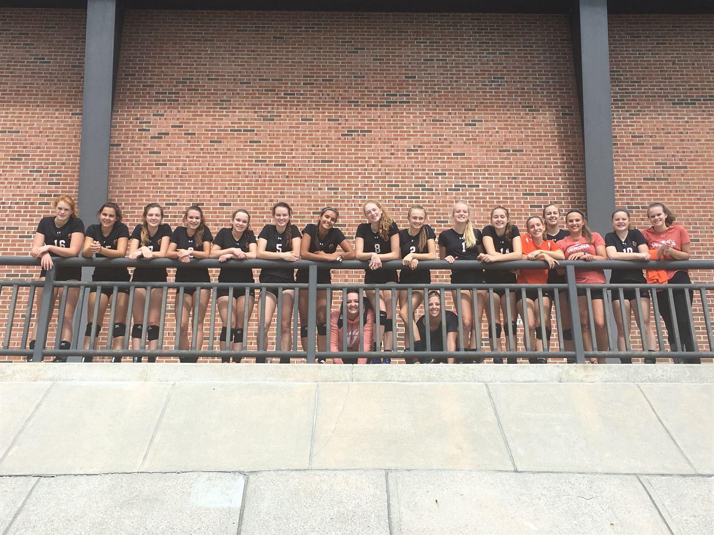 girls varsity volleyball verona area high school verona