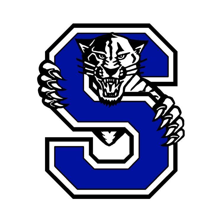 Stryker High School - Boys' Varsity Football
