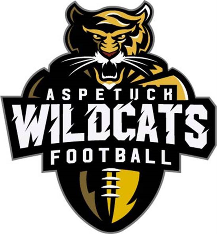 Aspetuck Wildcats 4/5 - Wildcats