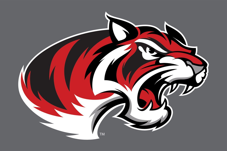 Braswell High School - Girls' Varsity Basketball