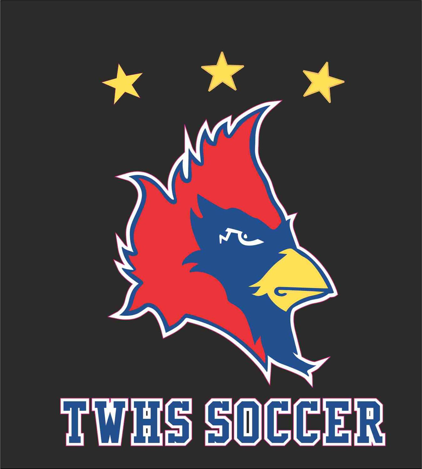 Thomas Worthington High School - Boys Varsity Soccer