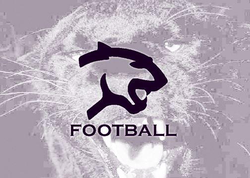 Litchfield High School - Boys Varsity Football