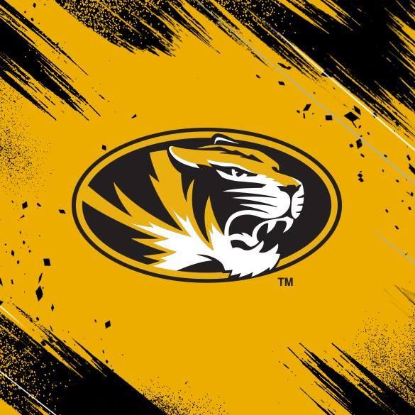 BSAA Tigers - BSAA Tigers
