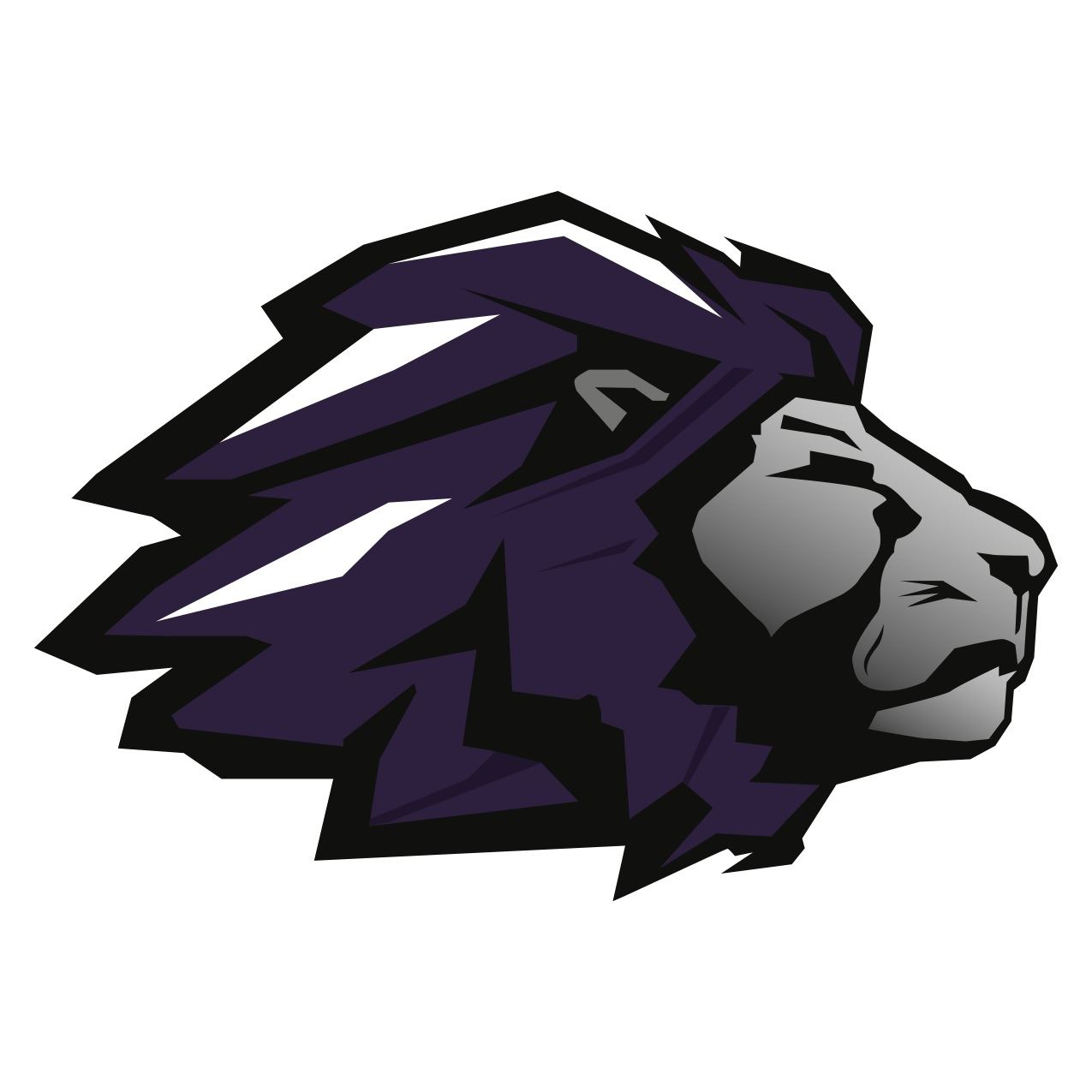 Trinity Christian High School - Boys Varsity Football TCHS Lions