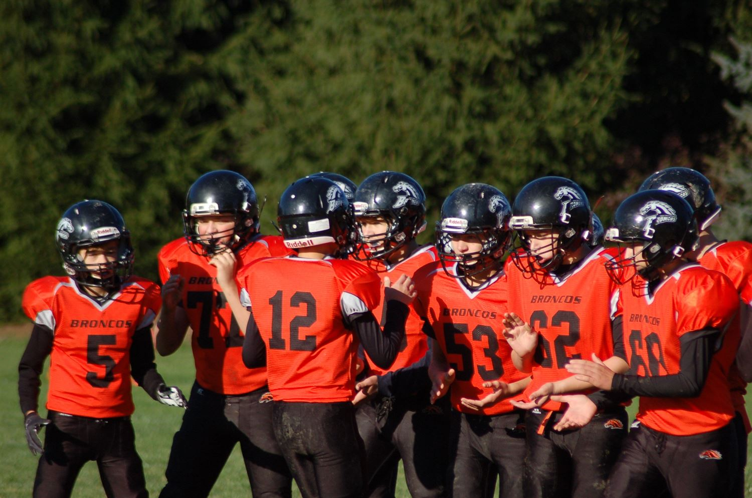 Cedar Grove-Belgium Youth Football- WAAYFL - Cedar Grove-Belgium 8th