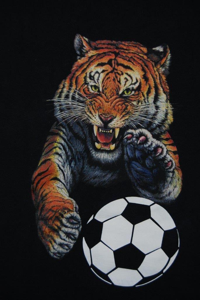 San Jacinto High School - Girls' Varsity Soccer
