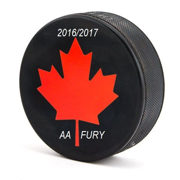 MidgetAA Elite Hockey - SPKAC -FURY- - FURY