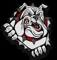 Cooper High School - Girls' Varsity Basketball